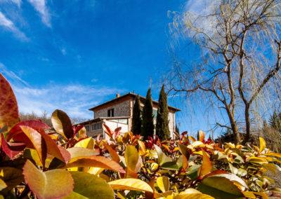 _il-ceppo-bed-and-breakfast-monteriggioni--ph-linda-frosini-4776